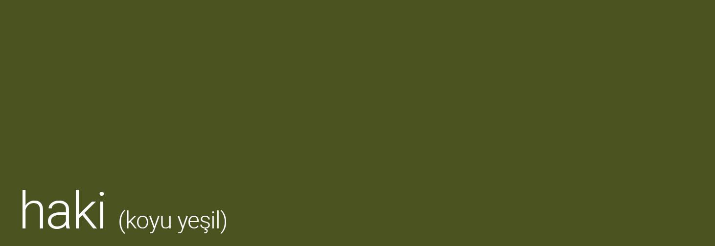 kurumsal renkler